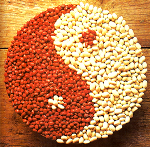 Chi Kung: Terapia Alternativa Contra el Cáncer